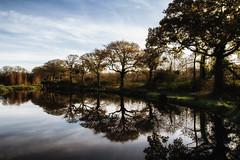 Autumn Reflections (Boba Fett3) Tags: autumn autumncolours autumnleaves trees water pond reflections outdoors outside northdevon devon westcountry treeline sky canon16mm35mmf28 canon100d walks landscape