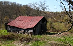 Love the old barns (markfesh) Tags: rural decay abandoned ohio hills hocking barn shed