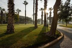 Mena House Hotel (stefan_fotos) Tags: afrika gegenlicht hotel kairo licht menahouse qf reisethemen sonnenaufgang urlaub hq gypten cairo egypt africa mena house giza