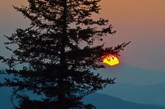 Hazy Sunset (esywlkr) Tags: sunset silhouette landscape nc northcarolina explore blueridgeparkway pisgah wnc pisgahnationalforest brp