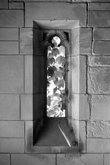 Window and ivy - Toronto Necropolis chapel (Richard Wintle) Tags: blackandwhite bw film window monochrome cemetery graveyard 35mm ivy chapel 400 135 premium necropolis argus c3 standdevelopment arista adox adonal film:iso=400 developer:brand=adox adoxadonal film:brand=freestylearista film:name=freestylearistapremium400 developer:name=adoxadonal freestylearistapremium400 filmdev:recipe=10329