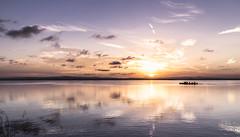 La Albufera. (Francisco Esteve Herrero) Tags: sunset landscape atardecer barca paisaje reflejos albufera 2015 pacoesteveherrero franciscoesteveherrero nikond5300
