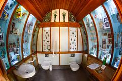 Soho Green Art Loo (sarah_presh) Tags: london soho toilet fisheye openhouse 105mm 2015 openhouselondon nikonfisheye warderstreet sohogreen stannesgarden artloo