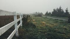 DSC08688 (rolemodel4kids) Tags: road seattle morning mist fog zeiss 35mm washington moody pacific northwest kodak farm sony carl fullframe pnw snohomish rx1 mirrorless vsco
