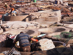 Marrakech 2015 (hunbille) Tags: morocco marrakech marrakesh medina babdebbagh bab debbagh tanneries tannery tanning leather factory cy2