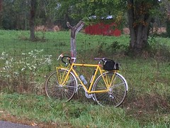 Little red shed October 2, 2015 (ddsiple) Tags: cycling jacktaylor littleredshed