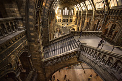 walking through history (stocks photography.) Tags: london history photography photographer stocks naturalhistorybuilding stocksphotography michaelmarsh