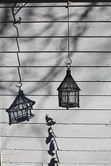Lantern Shadow (Mamluke) Tags: autumn shadow sun sunlight fall home leaves wall garden jardin lantern tageslicht sunlit zonlicht lumièredusoleil luzdelsol mamluke lucesolare