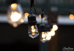String of Lights (schemagreener) Tags: challengeyouwinner