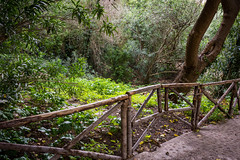 Siracusa, Neapolis Archeological Park, Italia! (Flavio~) Tags: day2 italy sicily archeologicalpark neapolis oct2015 syracusaortigia