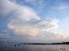 PC130166 (gprana) Tags: bali beach indonesia olympus lovina m43 singaraja micro43 microfourthirds olympusomdem5 olympusmzuiko1250mmf3563