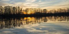 Sunset reflections at Pulling (Bernhard_Thum) Tags: bernhardthum thum nikond800e apodistagont1455 otus1455zf2 pulling nature capturenature landscapesdreams alemdagqualityonlyclub pinnaclephotography otus5514zf distagonotus5514zf