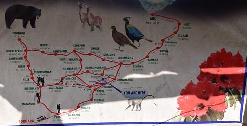 Схема времен для трека к базовому лагерю Аннапурны