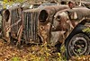 McLean's XXXXIV (martinaschneider) Tags: old fallleaves ontario fall abandoned car rust rockwood wreckers mcleans