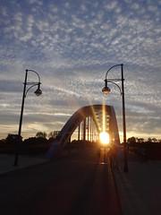 2002/05 Magdeburg Stern-Stabbogen-Straßen-Stahlbrücke 137mStW 243mL 900t bei Elbe-km 325 Heinrich-Heine-Platz in 39114 Rotehorn (Bergfels) Tags: architekturführer bergfels beschriftet 200205 magdeburg sternbrücke stabbogenbrücke strasenbrücke stahlbrücke stützweite spannweite länge masse elbekm heinrichheineplatz 39114 rotehorn 21jh elbbrücke brücke 2000er nach1989 bauwerkdesjahres 2002 prämiert sieger bogenbrücke 2005