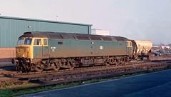 47 151 at Kings Lynn Yard. 11/12/84. (Marra Man) Tags: kingslynn britishrail class47 class470 47151