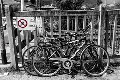 Divieto! - No parking (Luigi Pallara) Tags: canon eos 1200d divietodisosta divieto nobike noparking biciclette bike cartello sign blackwhite biancoenero dettaglio detail colore color contrasto contrast