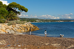 La Ciotat / The dog beach (Pantchoa) Tags: laciotat provence ctedazur france plage mer mditerrane chiens eau pins algues gens nikon d7100 sigma 1750f28