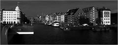 16-317 (lechecce) Tags: 2016 urban copenhagen blackandwhite sharingart digitalarttaiwan blinkagain awardtree shockofthenew artdigital netartii trolled ourtime flickraward