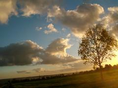 Sieh, welche lachende, liebliche Rume (amras_de) Tags: abend vespre vecer aften evening vespero ilta vespere sera vesper vakaras avond kveld seara forenicht kvll aksam sonnenuntergang escureixito ocs soumrak solnedgang sunset ocaso pikeseloojang auringonlasku coucherdesoleil zalazaksunca tramonto soloccidens saulelydis riets zonsondergang soleglad zachdslonca prdosol apus scurata dayset zpadslnka solnedgng