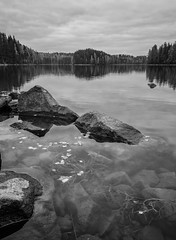Transparency (laurilehtophotography) Tags: transparent clear water rock autumn nature overcast day clouds naturelovers finland suomi jyvskyl vaajakoski vaajavirta forest path mirror nikon d5100 luonto syksy vesi joki river laurilehtophotography saturday calm blackandwhite monochrome reflections landscape landscapephotography