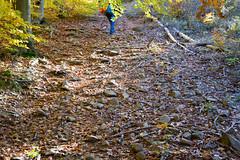 DSC_0223 (Pter_Szab) Tags: mtra matra hungary nature autumn colours mountains galyateto galyatet forest hiking nationalpark landscape