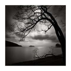 better left unsaid (StephenCairns) Tags: chikubuisland january lakebiwa makino shiga shigaprefecture cloudy inlet lake longexposure water winter branch broken betterleftunsaid
