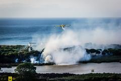 Incendio platamona (13) (Autolavaggiobatman) Tags: canadair fuoco incendio platamona pineta elicottero stagno fiamme fumo mare sardegna