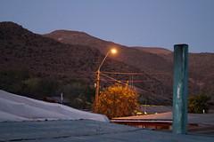 DSC08859 (C. Leiva Reyes) Tags: luz postes campo tranquilidad berbena