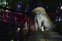 Shrine Guardian (Hsin-Chih Lo) Tags: 7d japan gifu hida takayama hirayamashrine stonelion