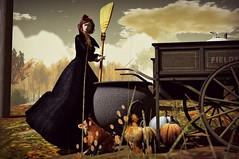 ......Witchcraft (lukreciamerchiston) Tags: woman witch countryside cauldron broom gown outside pumkins fox flowers sky tumbril hat clouds