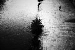 let the silence float (Lara Kantardjian) Tags: urban film analogue bw