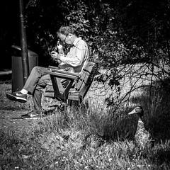 Time to go (Per sterlund) Tags: stockholm sweden bird people bnw bw baw square squareformat 2016 park citypark street streetphotography gatufoto strasenfotografie monochrome mono panasonic