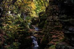 Pewits Nest III (In Wonder Photo) Tags: landscape waterfalls chasm gorge rocks quartzite pewitsneststatenaturalarea baraboo wisconsin nikon d750 markadsit