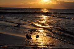 00624 east see sunset (modekopp) Tags: schnappschuss ostsee eastsee