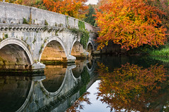 Beautiful reflections of the bridge and trees. (Pastel Frames Photography) Tags: autumn ireland river bridge reflections water leafs clear stillness co kildare colours nature outdoors travel sightseeing canon5dmark3 canon 2470 mm