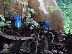 secret village (Troyka The Gallery) Tags: art hidden secretgarden penzance park tinyartproject