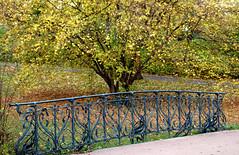 Wiesbaden, Nerotal-Anlagen, Schwarzbachbrücke (bridge) (HEN-Magonza) Tags: wiesbaden nerotalanlagen nerotalpark herbst autumn hessen hesse deutschland germany