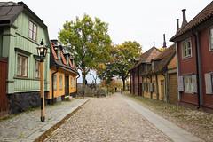 17102016-IMG_8260.jpg (thehikingzebra) Tags: stockholm sude visitepapaetmaman