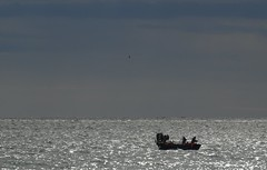 pche au chalut (b.four) Tags: mer mare sea pche chalut trawling reteastrascico cagnessurmer alpesmaritimes ruby5 ruby10