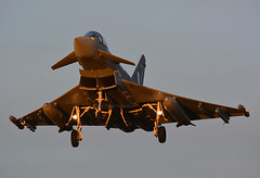 Golden Typhoon (np1991) Tags: royal air force raf lossiemouth lossie moray scotland united kingdom uk nikon digital slr dslr d7100 camera sigma 50500 50 500 50500mm bigma lens aviation planes aircraft eurofighter typhoon sunset dusk golden