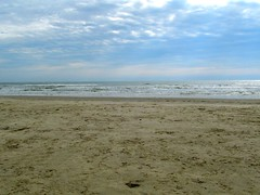Padre Island Winter (dog.happy.art) Tags: beach winter texas padreisland corpuschristi gulfofmexico
