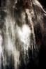 35-802 (ndpa / s. lundeen, archivist) Tags: nick dewolf nickdewolf color photographbynickdewolf 1970s 1973 1972 film 35mm 35 reel35 arizona northernarizona southwesternunitedstates canyon marblecanyon grandcanyon coloradoriver raftingtrip raftingexpedition rafting river riverrafting water waterfall fallingwater