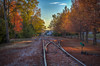 Autumn along the tracks (donnieking1811) Tags: tennessee cookeville ttu tennesseetech tennesseetechnologicaluniversity autumn fall fallcolors fallfoliage railroadtracks railway tree trees canon 60d hdraddicted thebestofhdr hdrextremes