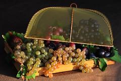 Échappée de grappes (Hélène Quintaine) Tags: fruit composition automne plateau grain vin vignoble septembre vigne raisin feuille vendanges naturemorte grappe création figue