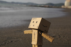 Tateyama City/Canon EOS60D:Canon EF-S60mm F2.8 Macro USM (telenity) Tags: danboard