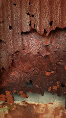 Rusty Tin Study #6 (Calsidyrose) Tags: old texture vintage tin grunge rusty worn spotted siding crusty chippy grungy mottled t4lagree