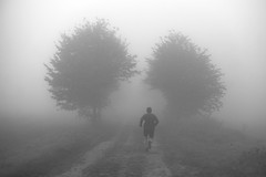 Ce qui nous attend... / What lies ahead.. (Julien Delfort) Tags: morning blur tree monochrome fog way julien noir day foggy trail walker fujifilm jogging yesterday et campagne arbre blanc brouillard chemin jogger xm1 delfort xc50230