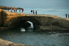 290 (nelson.kimberli) Tags: ocean california travel sunset sandiego sunsetcliffs cliffdivers daredevils luscombspoint