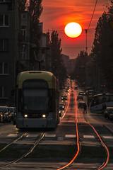 Sunset over Pomorska Street. Lodz, Poland (stefbra) Tags: street sunset sun cityscape tracks tram poland lodz